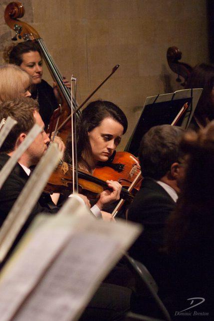 symphony-orchestra-string-player