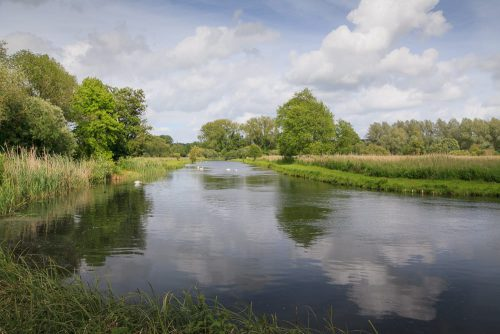 River Test at Houghton
